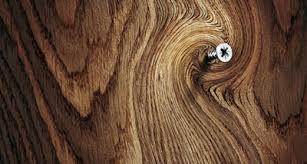 انواع چوب ،ویژگی و کاربردهای آنان