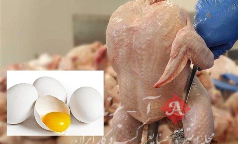 کمیته ساماندهی بازار مرغ و تخممرغ تشکیل شد