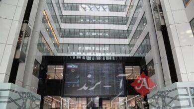 اسامی سهام بورس با بالاترین و پایینترین رشد قیمت امروز 1400/01/17