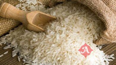 قیمت ارزان ترین برنج های موجود در بازار در آستانه ماه مبارک رمضان