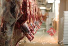 قیمت گوشت گوسفندی ۱۴۰ هزار تومان/ مردم توان خرید ندارند