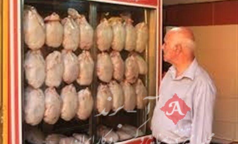 وزارت جهاد کشاورزی: بازار مرغ اشباع شد